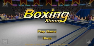 9 Super KO Boxing 2