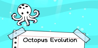 Octopus Evolution