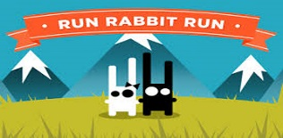 Rabbit Run Run