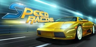 Speed ​​Racing 3D