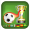 Vrai Football Manager National